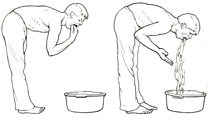 Как сделать промывание желудка кошке в домашних условиях