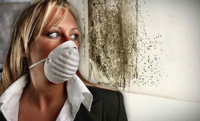 как предотвратить отравление плесенью