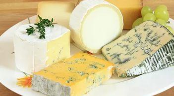 полезная плесень на сыре